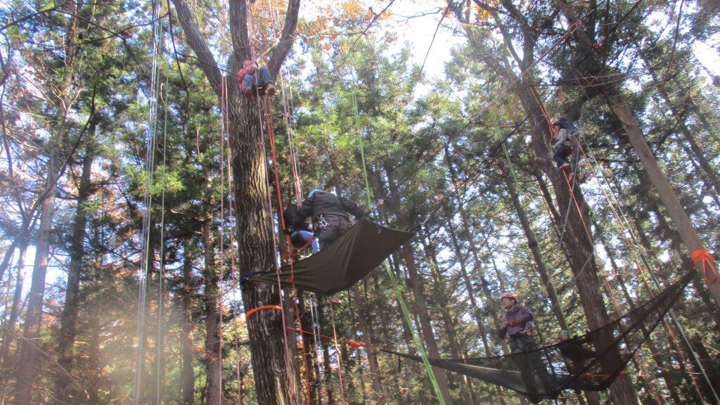 プログラムⅠ ツリーイング(木のぼり)