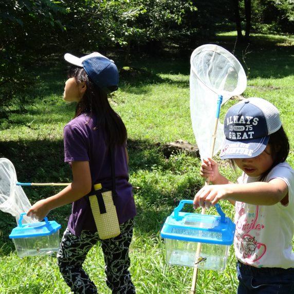 プログラムⅠ 昆虫観察